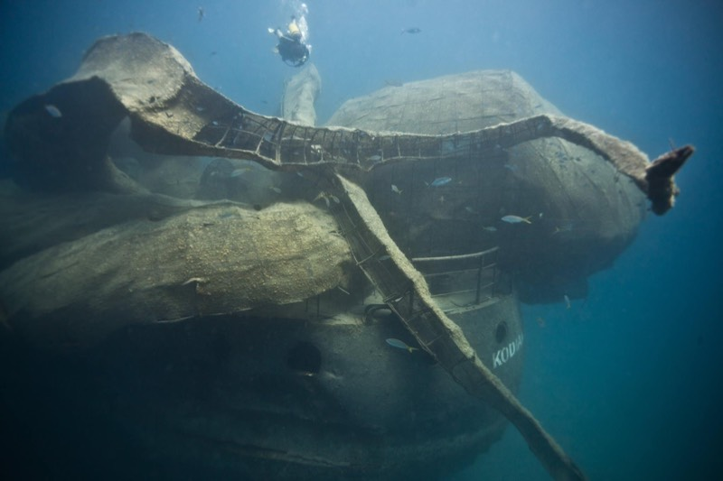 A World War II Warship And A Giant Kraken Was Sunk To Create Artificial Coral Reef